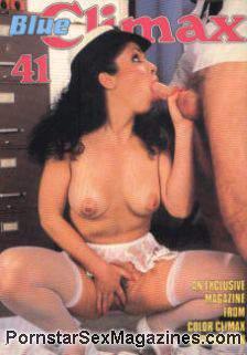 Best Swinger Porn Swinger Vixens Porn Videos